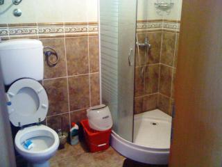 фото 19 - туалет на 1 эт