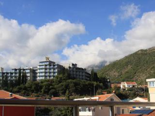 фото 3 - Вид с террасы3