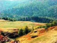 Гора Беласица
