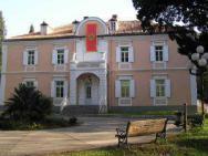 Музей Галерея искусств Петровича
