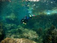 Активный отдых Дайвинг Риф острова Старый Улцинь