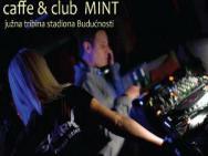 Дискотека Mint Club