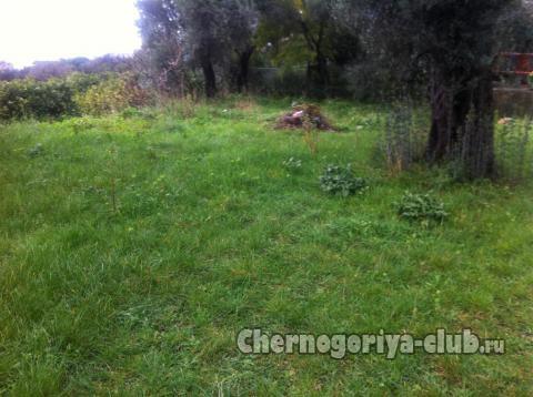 Покупка земли в черногории бургас апартаменты купить