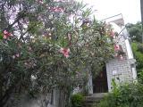 Дом / Вилла в Игало