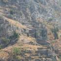Крепостная стена старого Котора