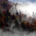 В Национальном парке Биоградская гора Октябрь 2007