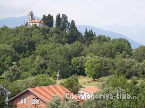 Апартамент в Радовичи за 25 €  в сутки