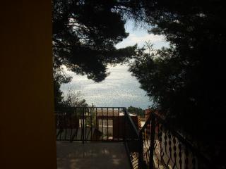 фото 4 - Вид с террасы