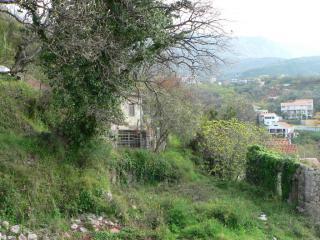 фото 9 - 3 вид зелен горы