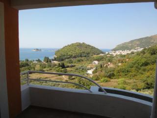 фото 8 - вид с балкона.