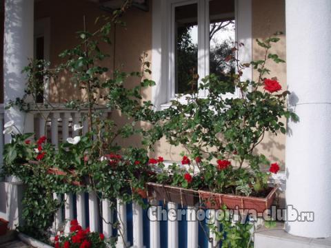 Апартамент в Рафаиловичи за 25 €  в сутки