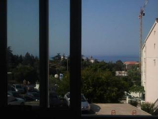 Апартамент в Петроваце за 4 €  в сутки