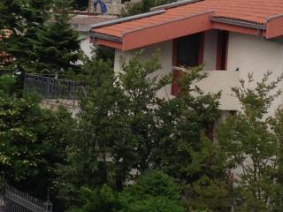Апартамент в Шушань за 30 €  в сутки