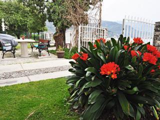 фото 16 - Biella-Villa-Jasmin-42
