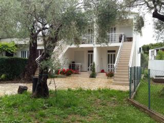 фото 1 - двор