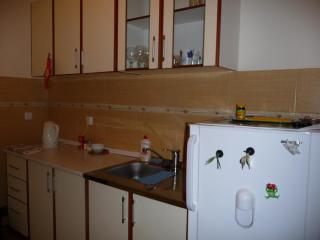 фото 9 - кухня