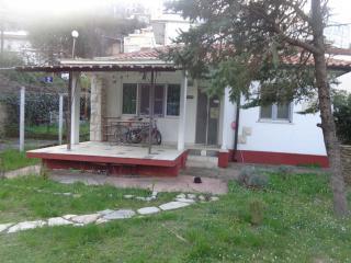 Апартамент в Будве за 170 €  в сутки