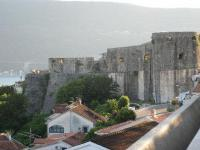 Belvedere Gregorian